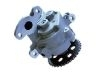 Bomba aceite Oil Pump:1117948